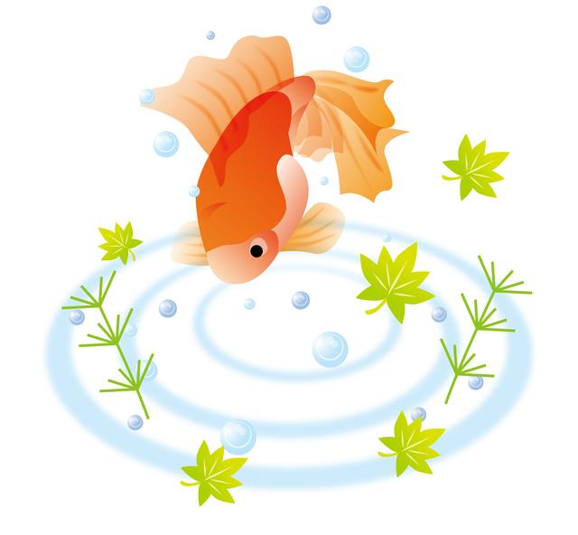 03金魚.jpg